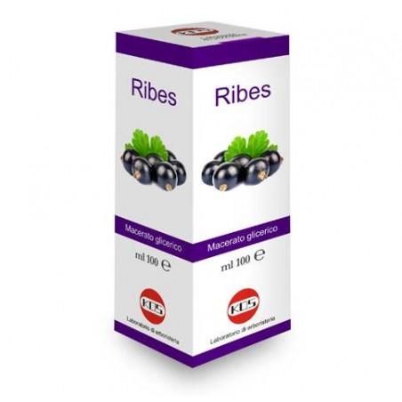 Kos - Ribes Nigrum macerato glicerico 100ml